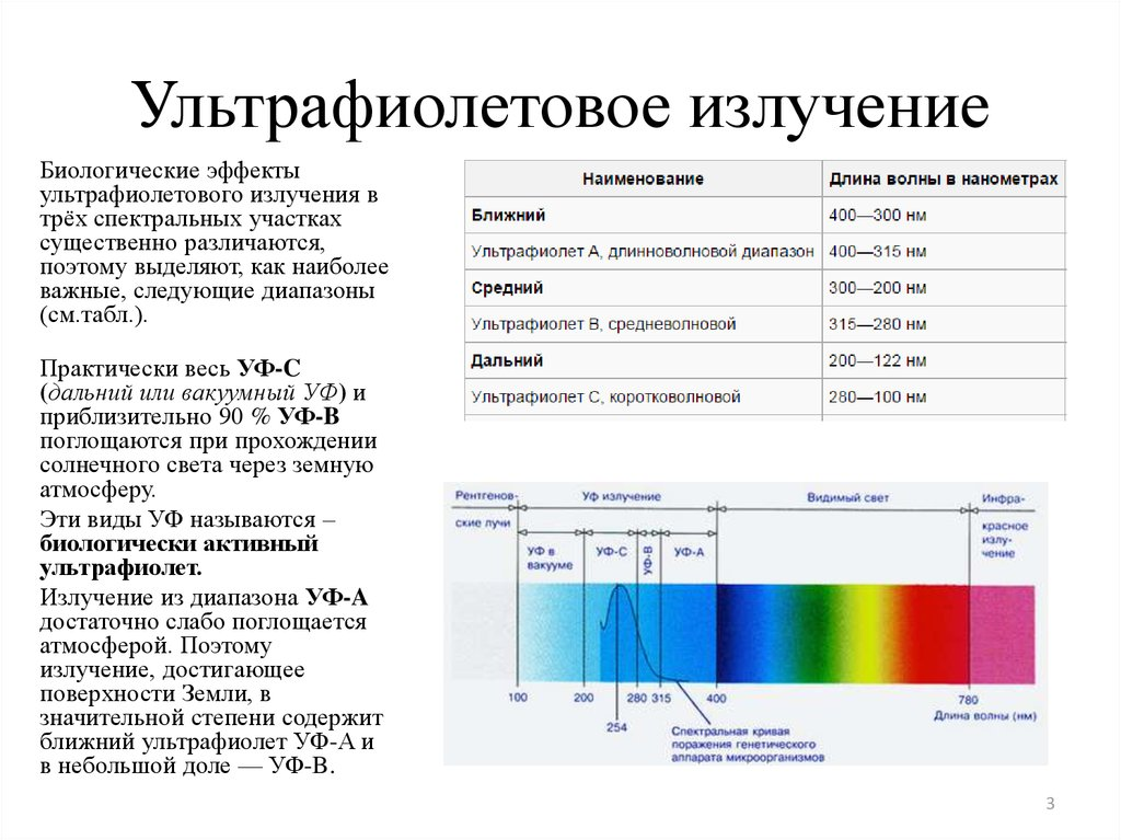 the affect of ultra violet radiation The objective of this study was to investigate the effect of elevated ultraviolet radiation on photosynthesis and some metabolic activities (chlorophyll a, b.