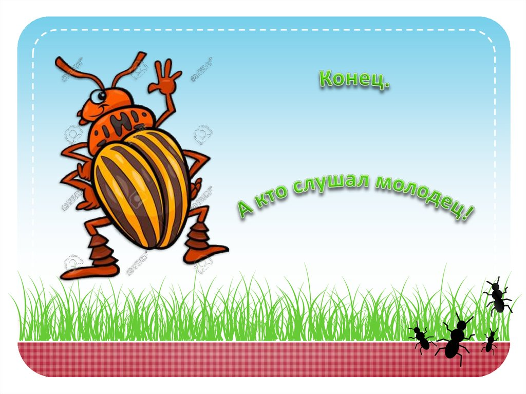 Черно-белые, прикольные картинки колорадского жука