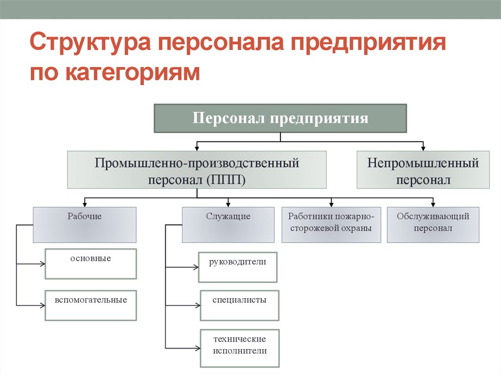 Кадровой предприятия структура шпаргалка службы
