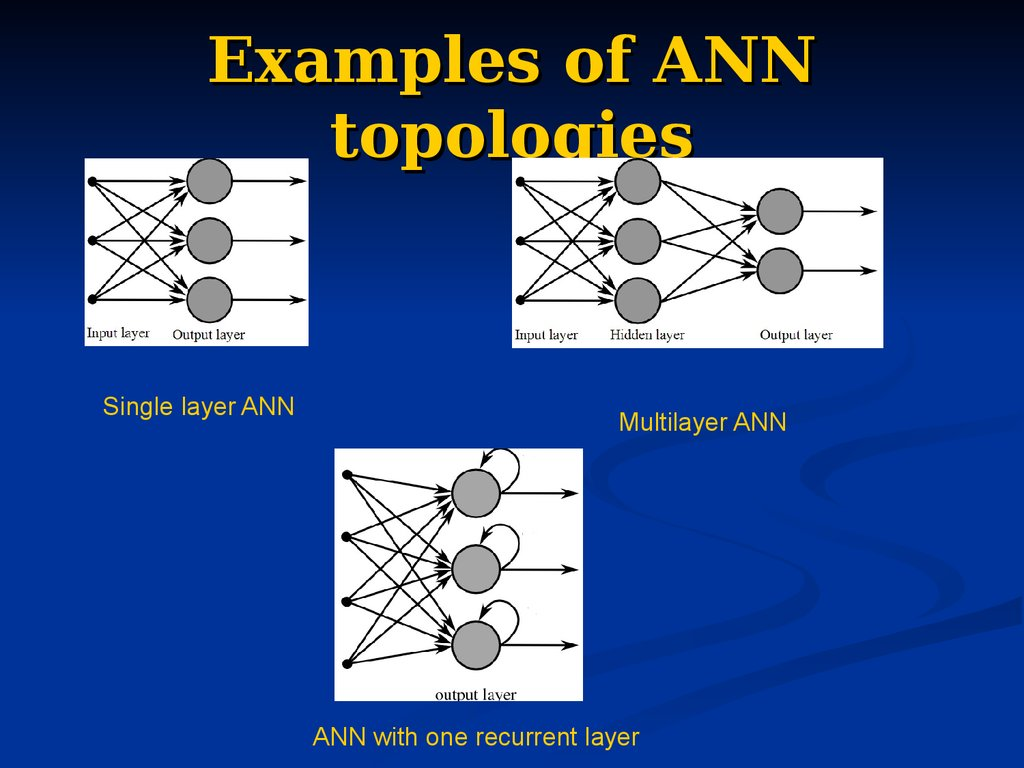 Examples of ANN topologies