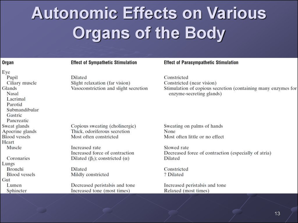 Autonomic Effects on Various Organs of the Body
