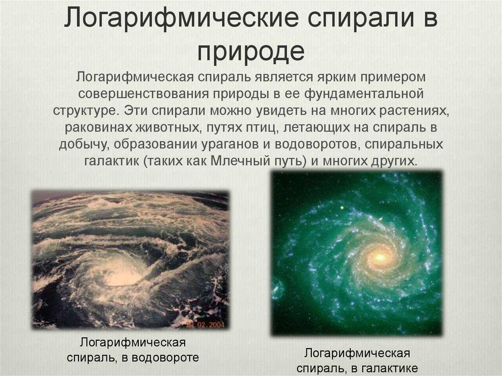 картинки логарифмы в природе вами гирлянду