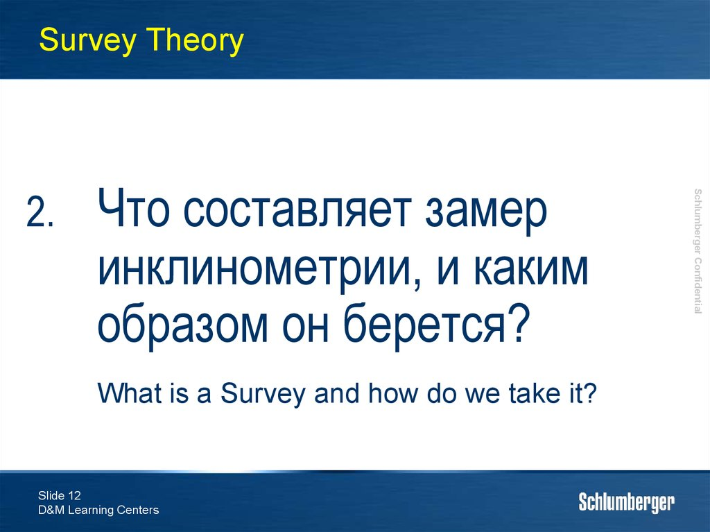 Survey Theory