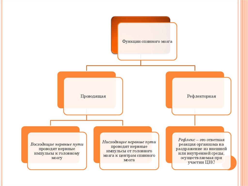 read модальность учебно методическое пособие по практической