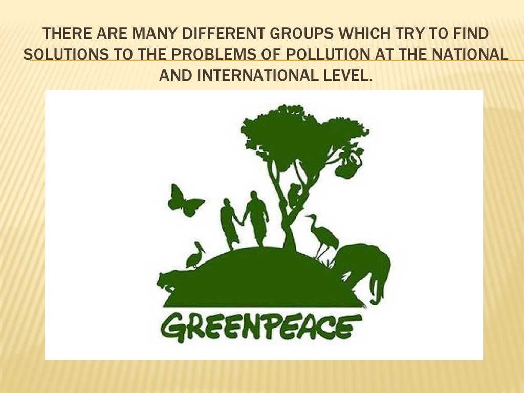 There are many different groups which try to find solutions to the problems of pollution at the national and international level.