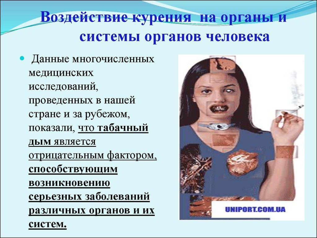 Вред курения на организм человека кратко Ученые
