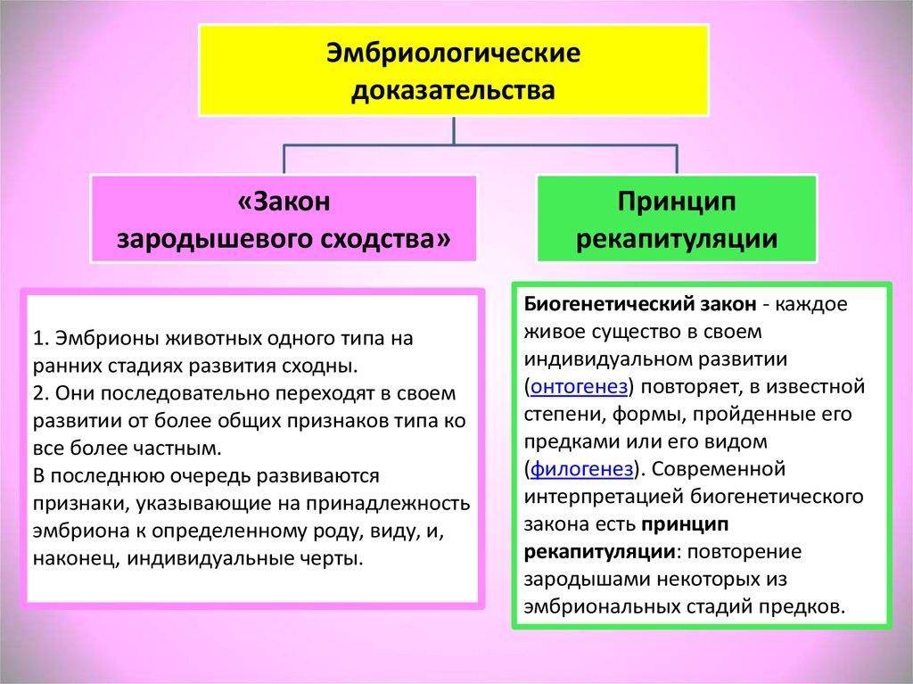Основные доказательства эволюции