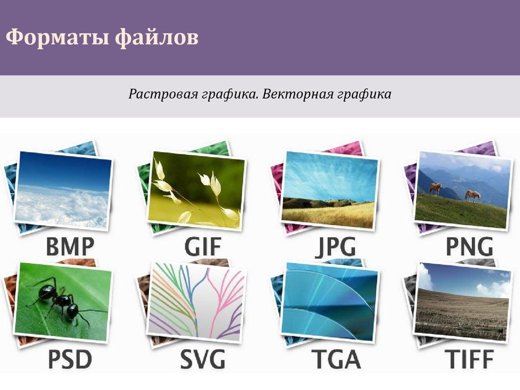 территории разрешение файлов картинок фото
