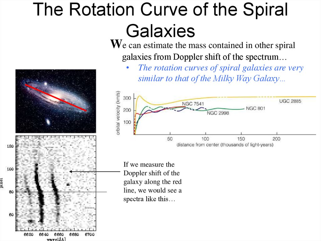 The Rotation Curve of the Spiral Galaxies