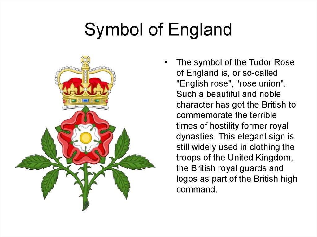 England Flower Symbol Choice Image Free Symbol And Sign