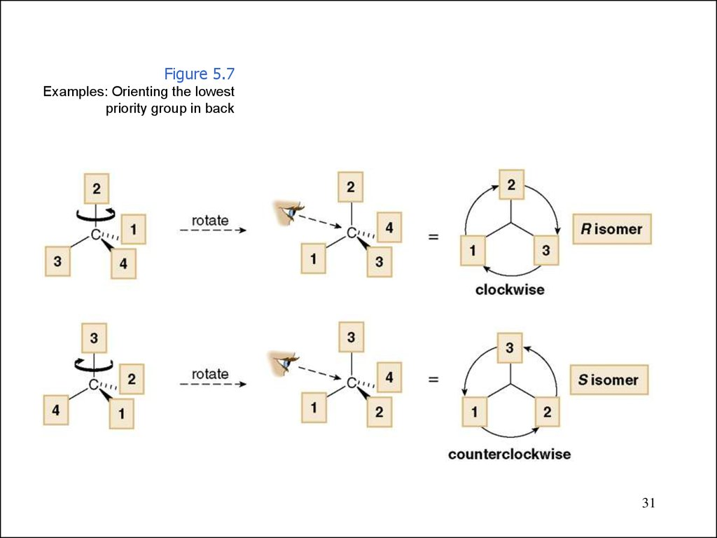 Stereochemistryomers Are Different Compounds Online Presentation