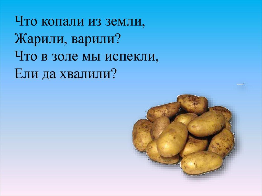 русский язык урок 21 3 класс