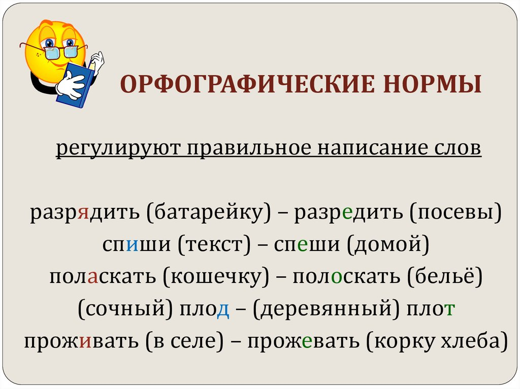 орфография понять орфографических норм принципы русского русской орфографии любого