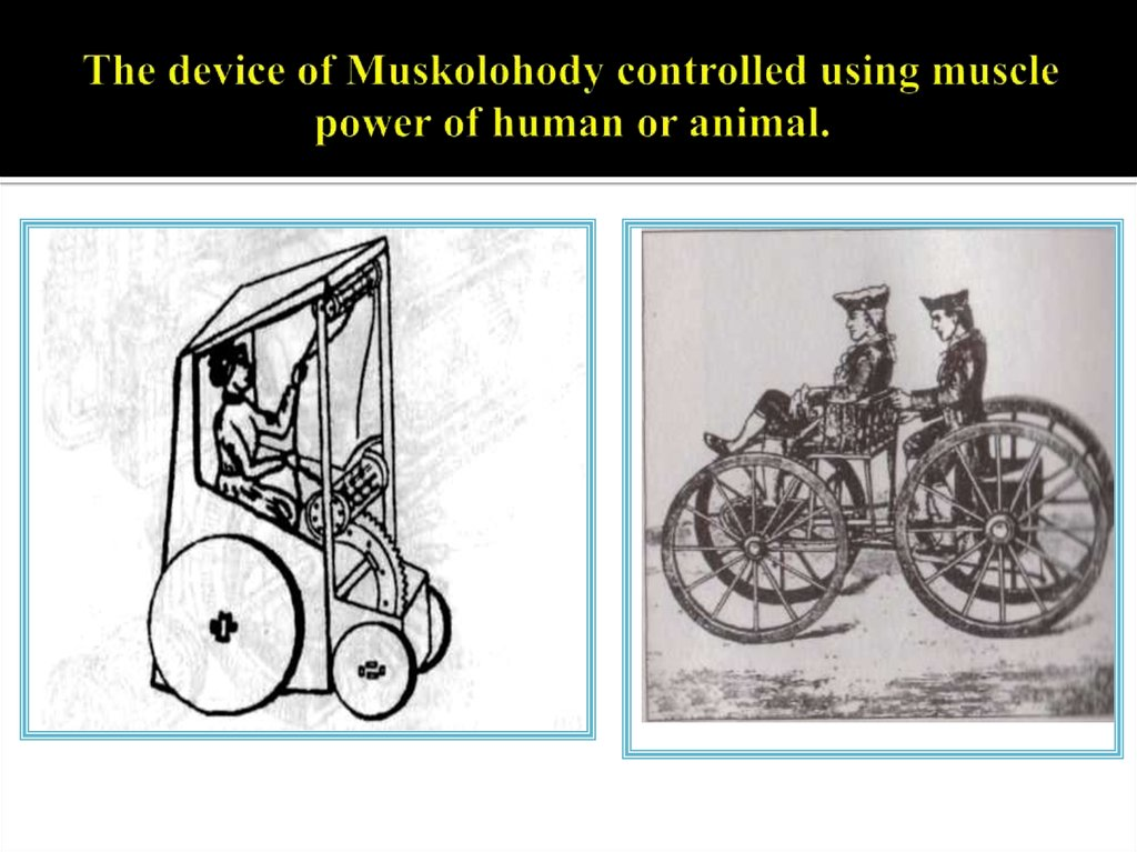 The device of Muskolohody controlled using muscle power of human or animal.