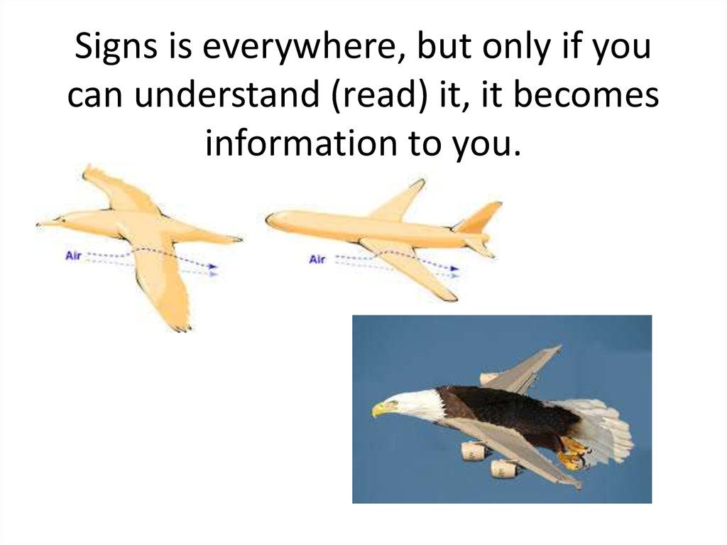 Signs is everywhere, but only if you can understand (read) it, it becomes information to you.