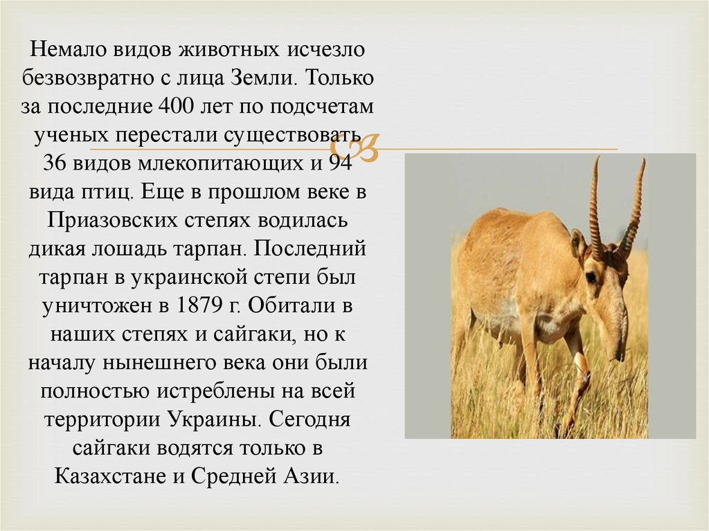 Реферат красная книга донбасса животные 166