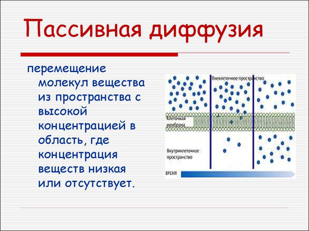 """Инкубаторы """"Блиц"""", """"Поседа"""" (ч.5) - Страница 2 Slide-32"""