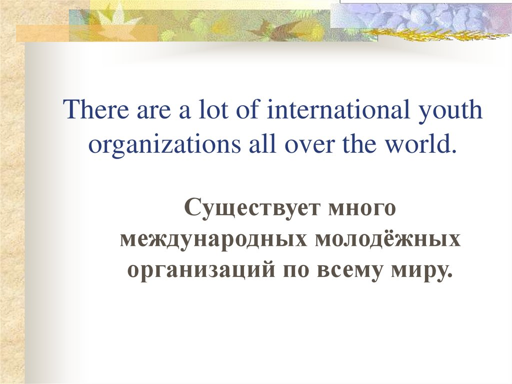 There are a lot of international youth organizations all over the world.
