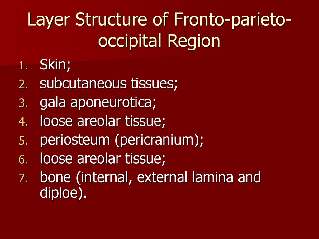 Layer Structure of Fronto-parieto-occipital Region