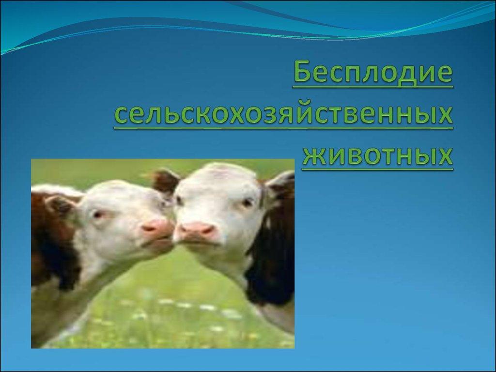 лечение бесплодия у животных