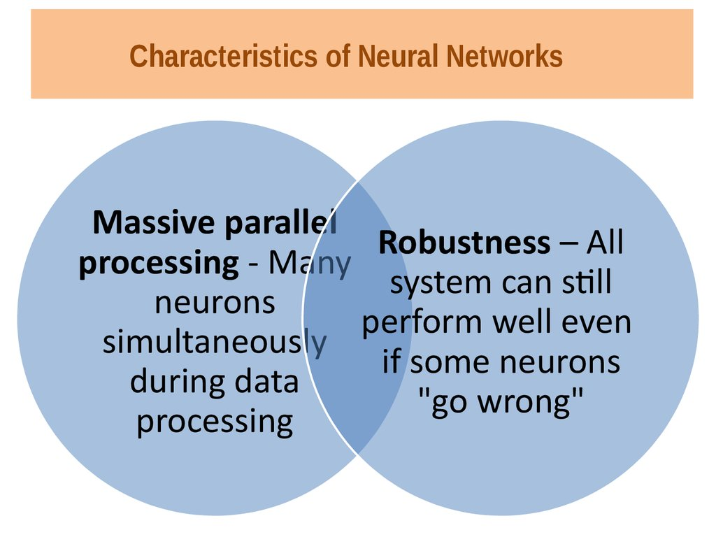 Characteristics of Neural Networks