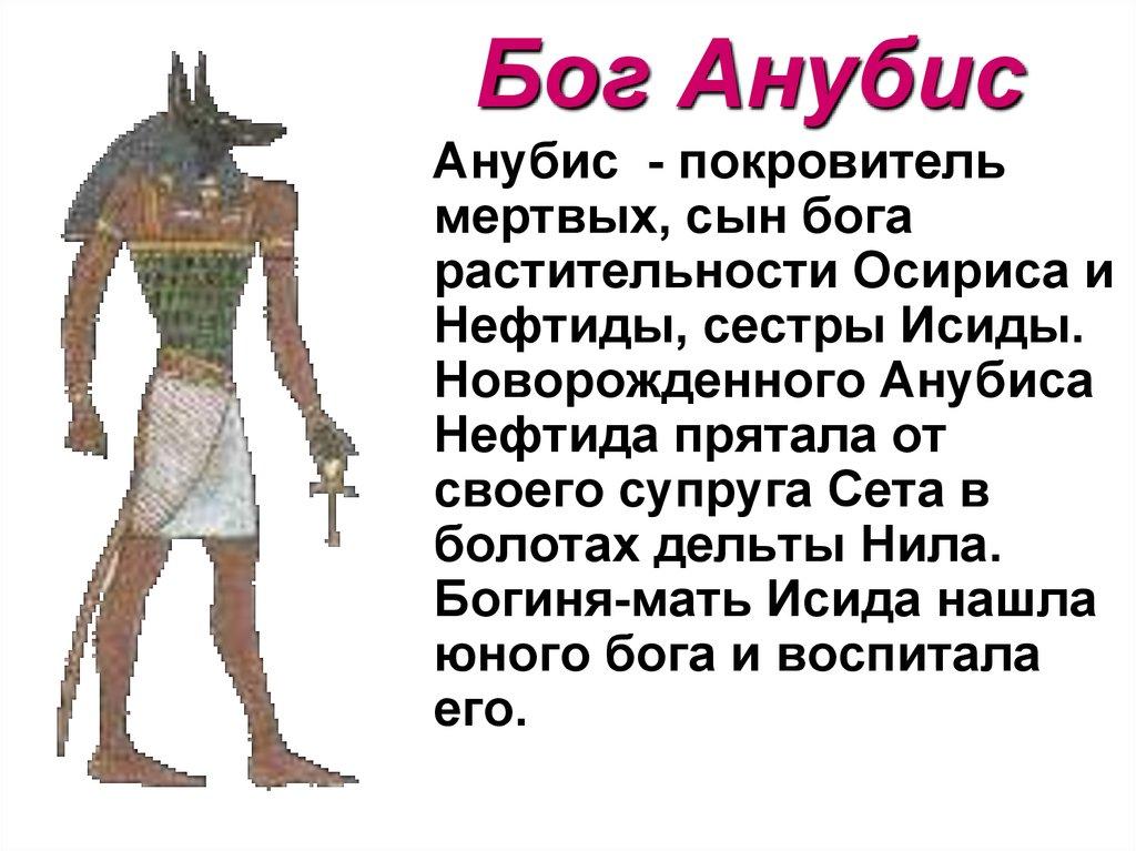 Картинки по запросу бог анубис