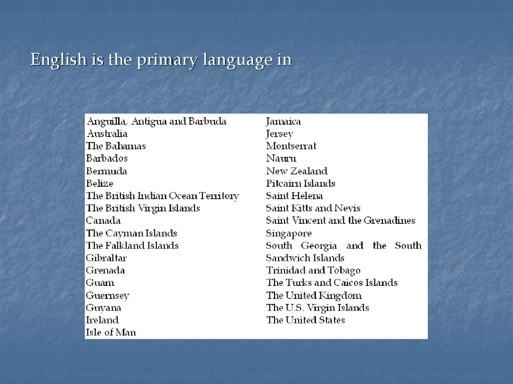 English is the primary language in