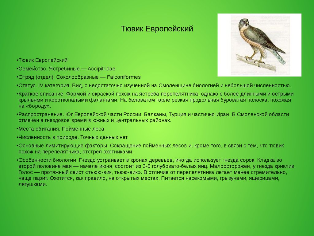 view biopsy interpretation of the