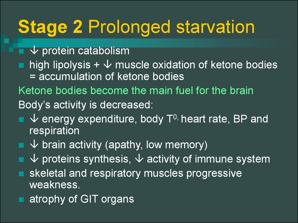 Stage 2 Prolonged starvation