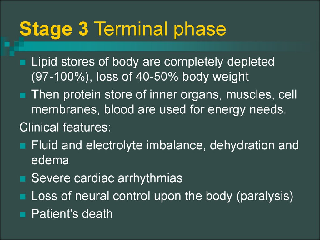 Stage 3 Terminal phase