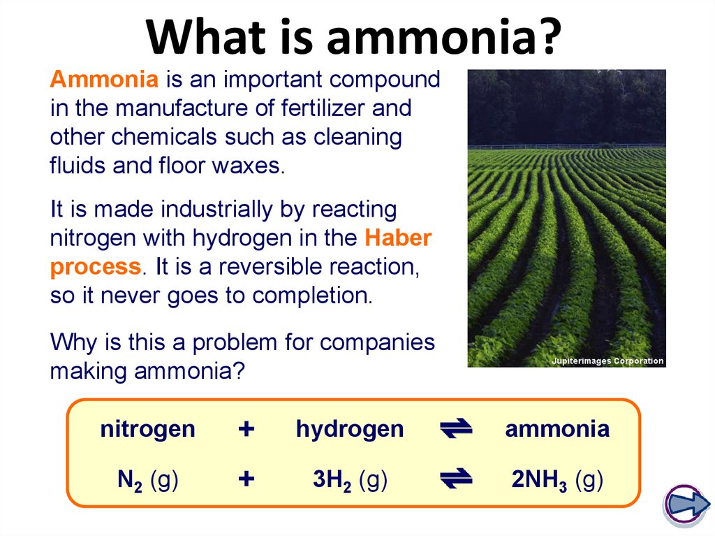 What is ammonia?