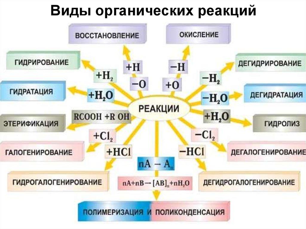 shop The Peshitta and Syro Hexapla Translations