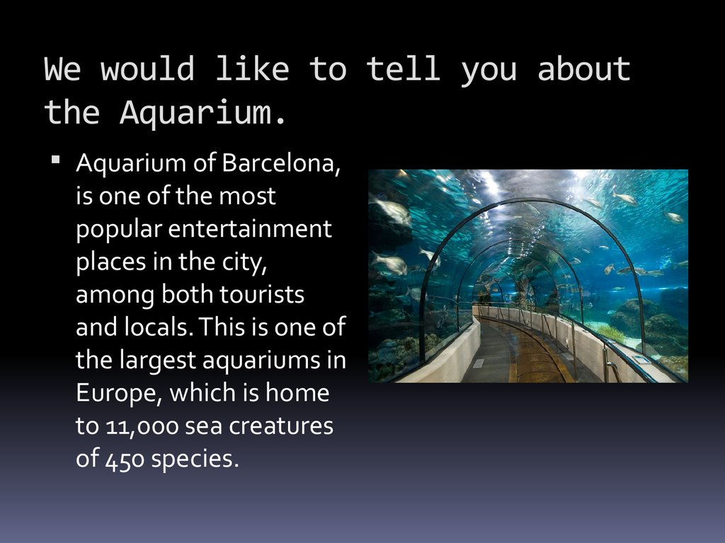 We would like to tell you about the Aquarium.