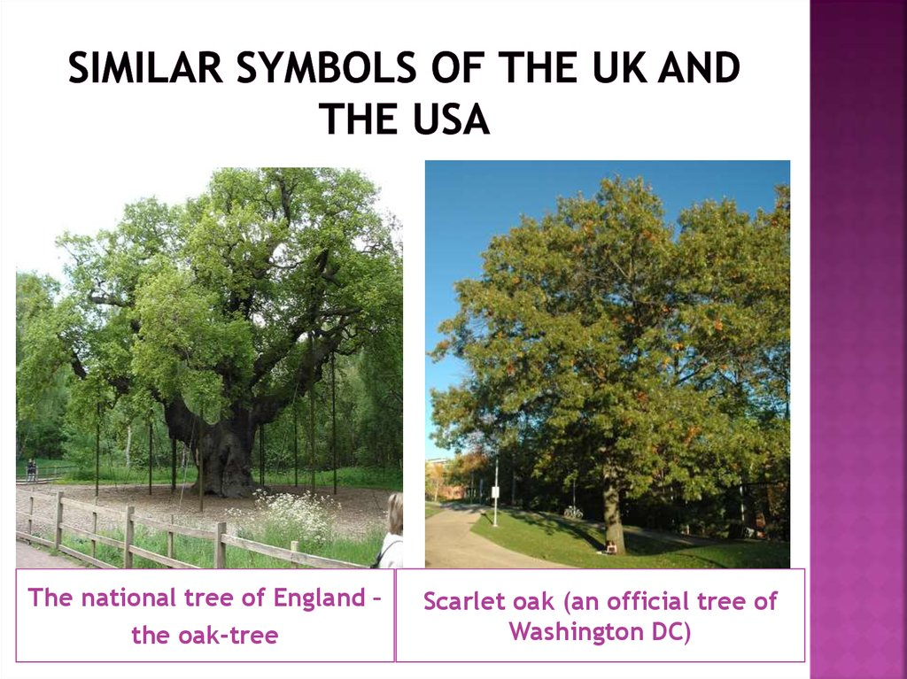 Similar symbols of the UK and the usa