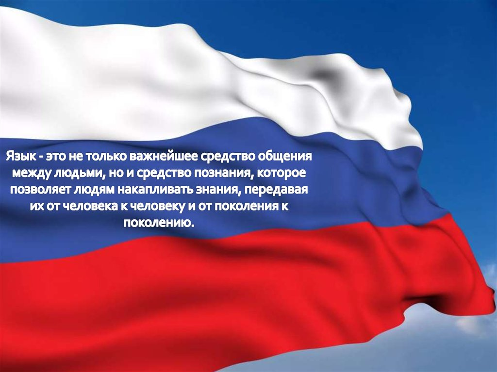 Русский язык среди языков мира доклад 9233