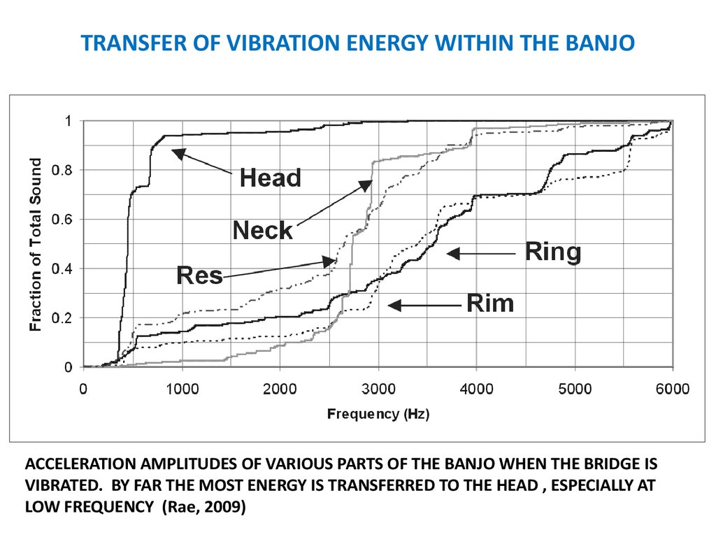 TRANSFER OF VIBRATION ENERGY WITHIN THE BANJO