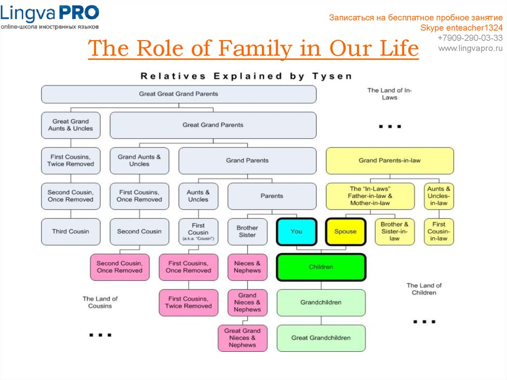 The Role of Family in Our Life