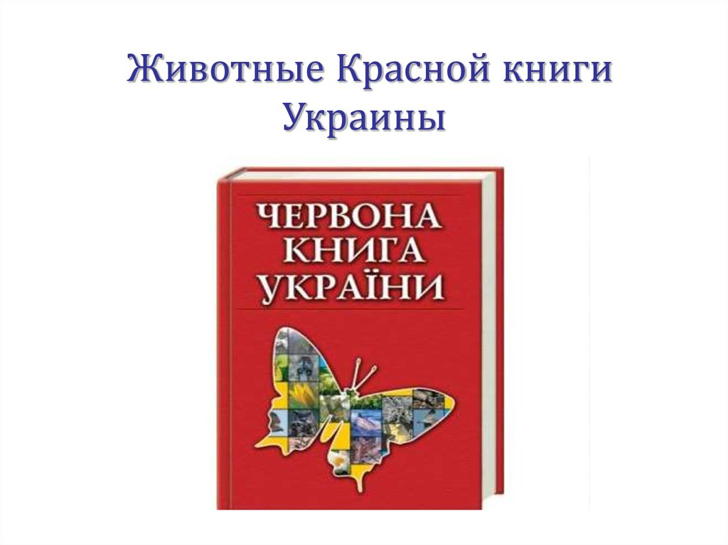 epub The Nature and Functions