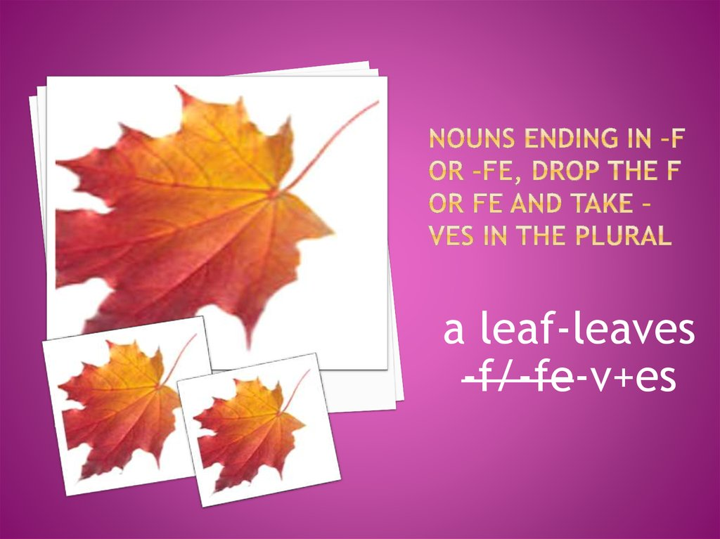 Nouns ending in –f or –fe, drop the f or fe and take –ves in the plural