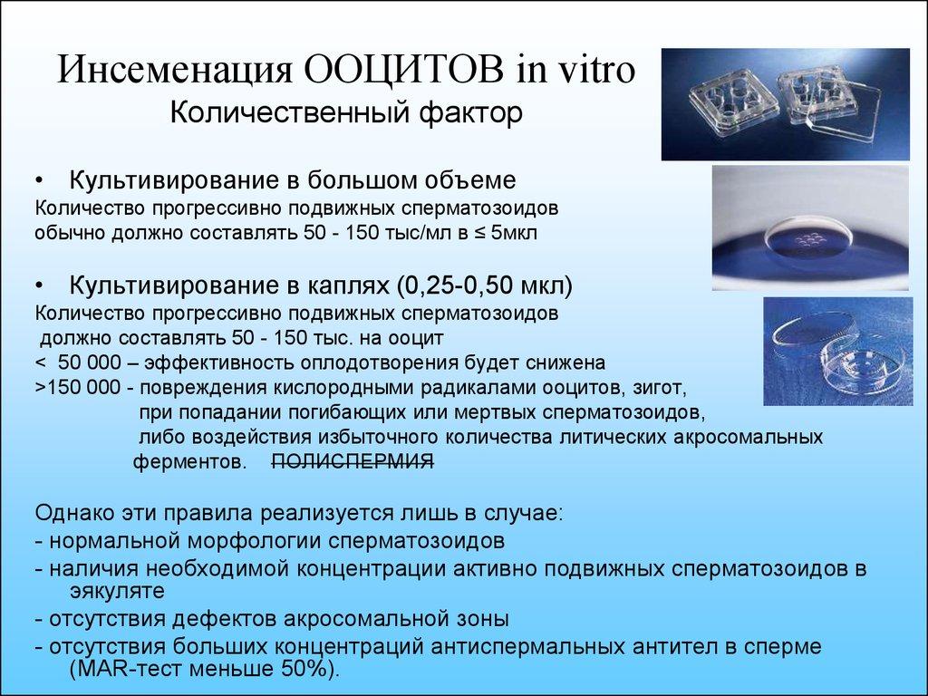 Желатиновые тельца в сперме