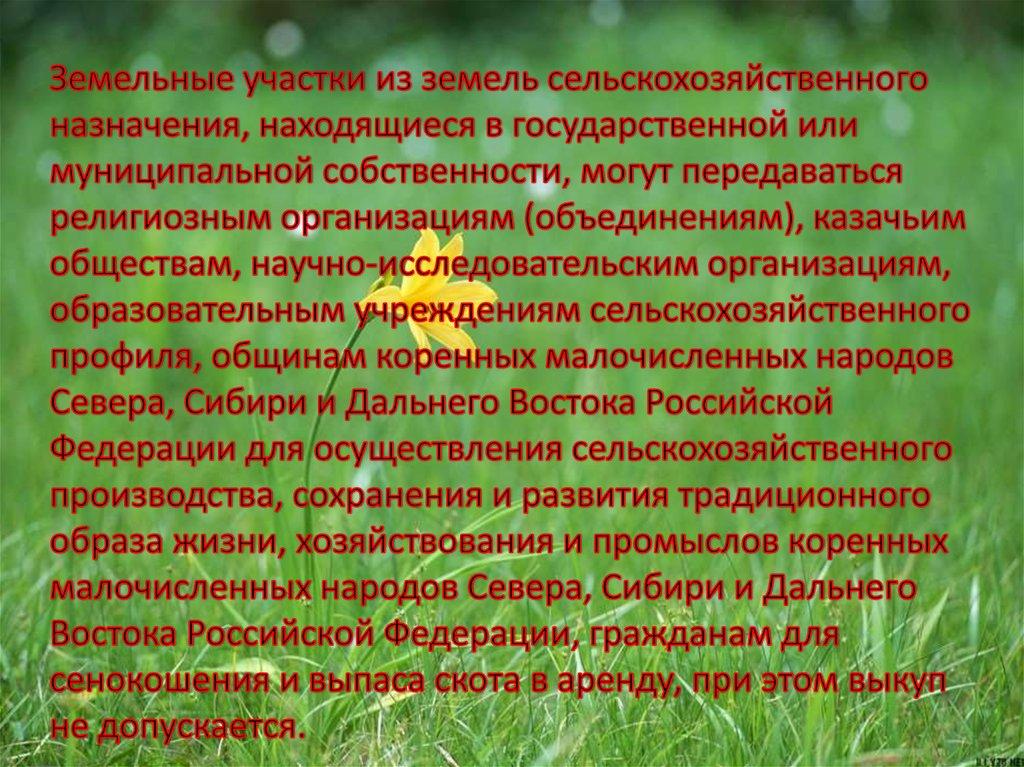 Особенности Управления Землями Сельскохозяйственного Назначения Шпаргалка