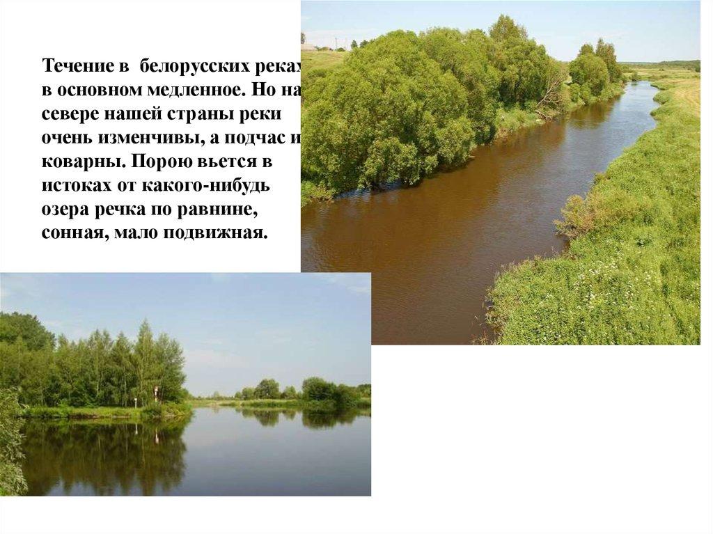 Доклад реки и озера беларуси 5339