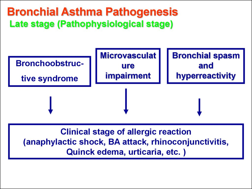 Bronchial Asthma Pathogenesis Late stage (Pathophysiological stage)