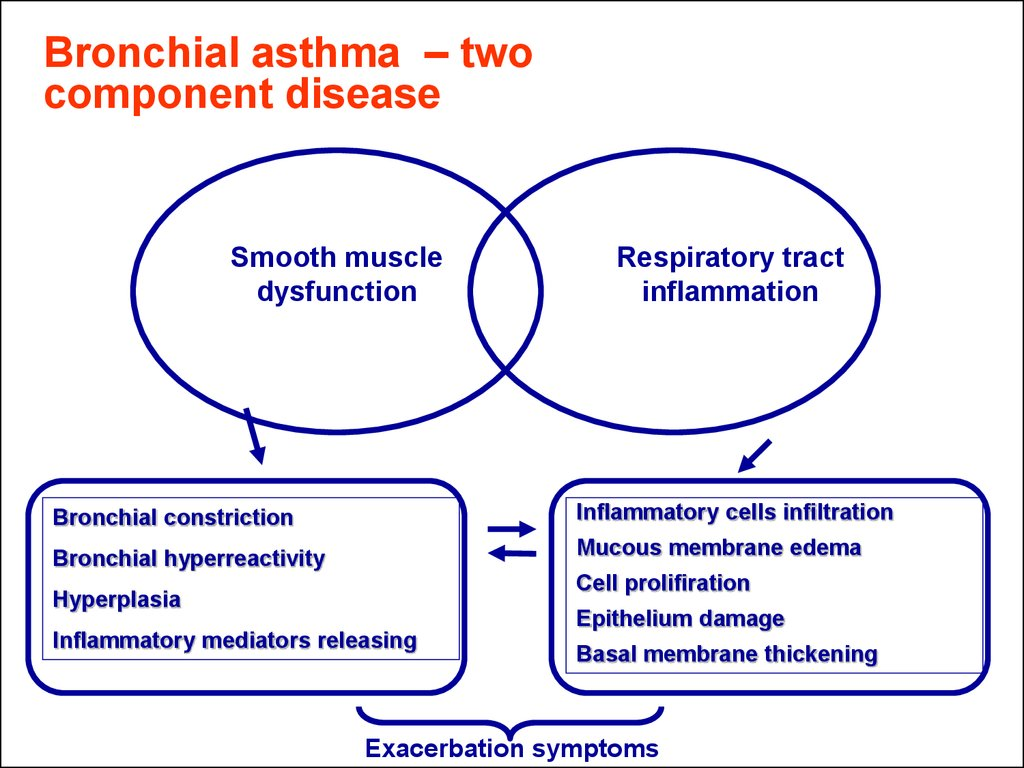 Bronchial asthma – two component disease
