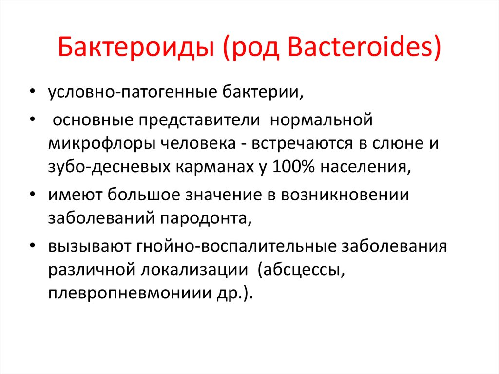 Бактероиды (род Bacteroides)