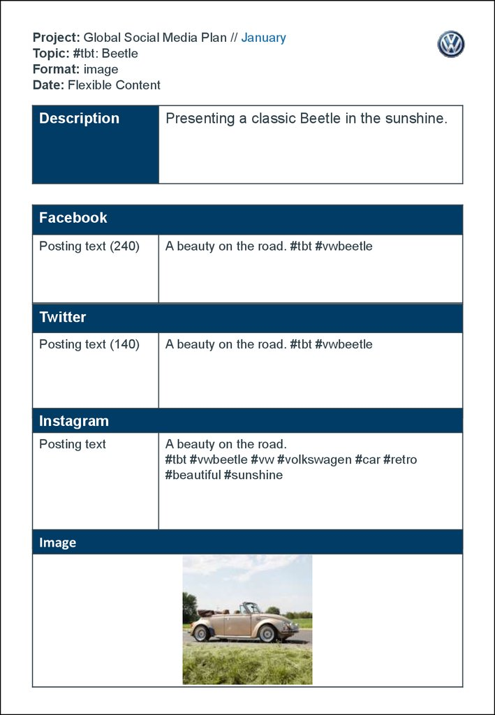 Project: Global Social Media Plan // January Topic: #tbt: Beetle Format: image Date: Flexible Content