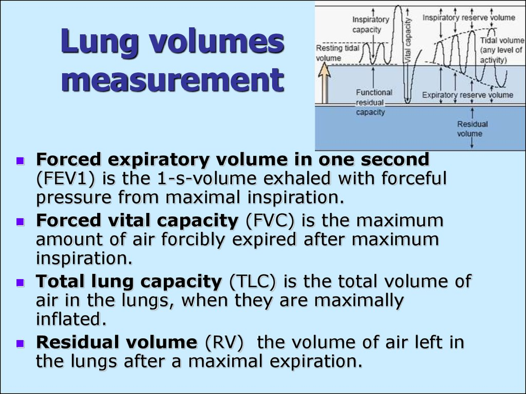 Lung volumes measurement