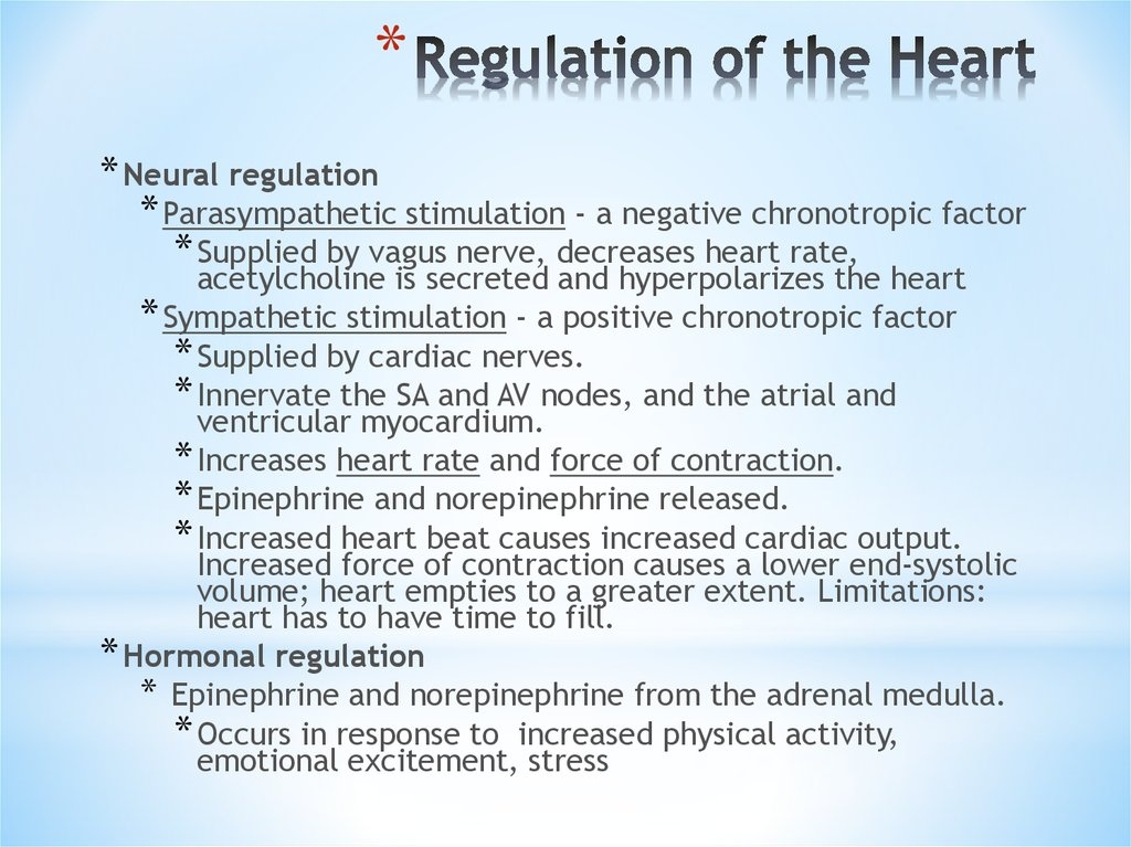 Regulation of the Heart