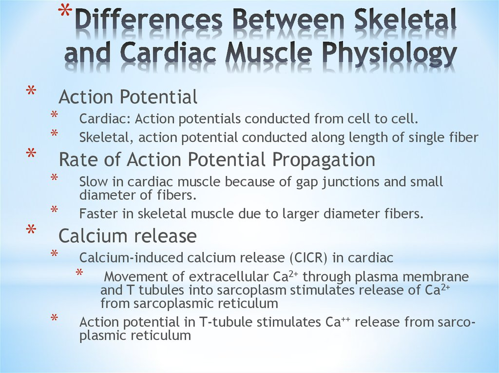 Differences Between Skeletal and Cardiac Muscle Physiology