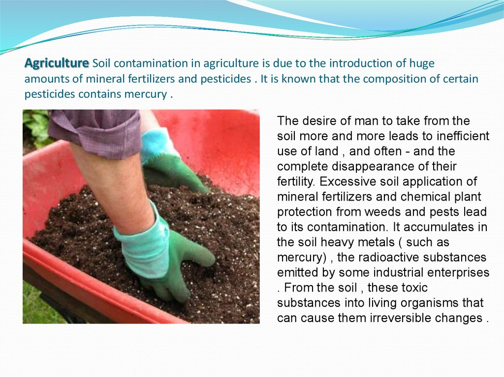 Agriculture Soil contamination in agriculture is due to the introduction of huge amounts of mineral fertilizers and pesticides . It is known that the composition of certain pesticides contains mercury .